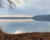 Blick über den ruhigen Stechlinsee zur Halbinsel