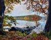 Stechlinsee mit herbstlichen Ufer