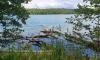 Stechlinsee mit typischen Uferbewuchs