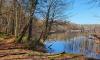 Uferwanderweg vom Stechlinsee im Herbst