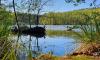Ufer im Schlaubetal im Frühling